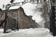 Calls for BBC to apologise for 'offensive' Shoah article