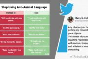 PETA gets slammed after comparing 'anti-animal' idioms with racism and homophobia